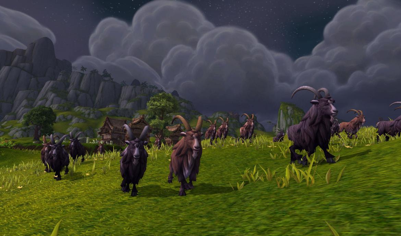 A Shaghorn pack