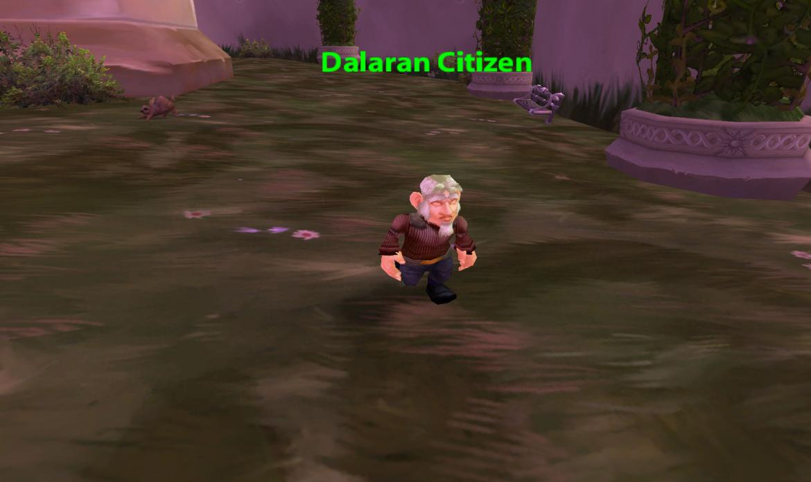 Dalaran Citizen
