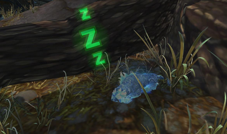 Litter of Xuen snoring