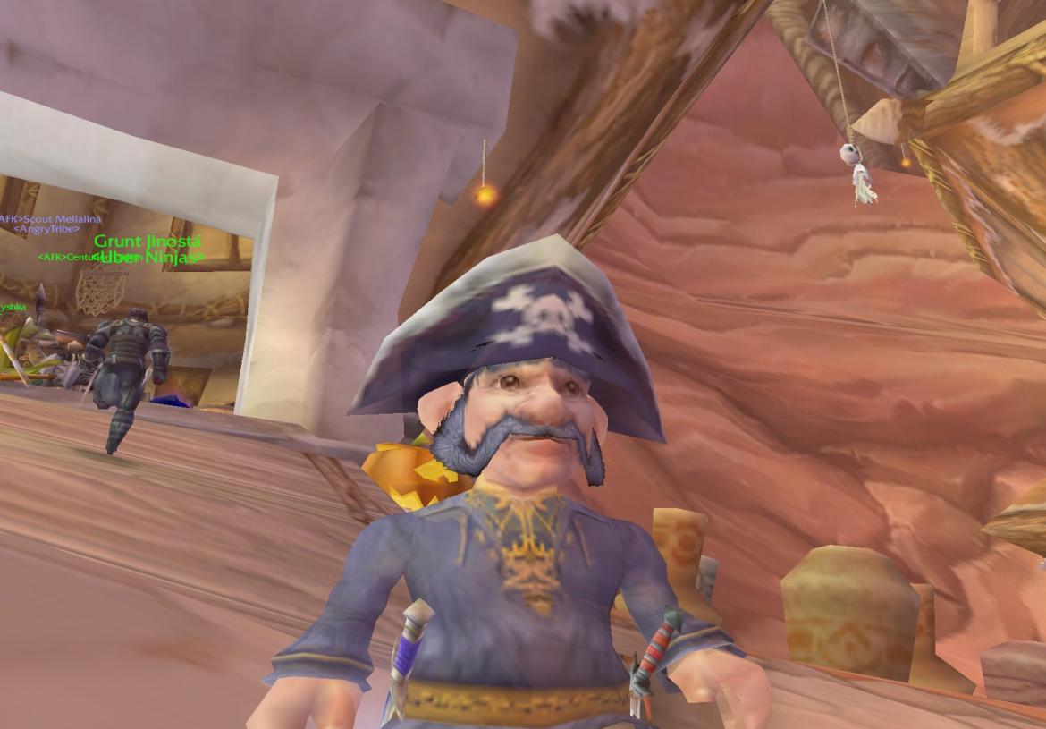 Pirate Gnome