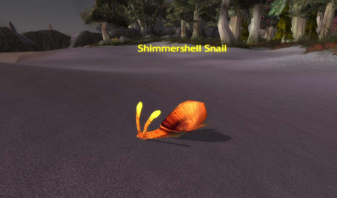 Shimmershell Snail