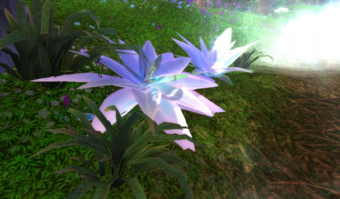 Mount Hyjal Flower